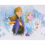 Frozen Disney σουπλά